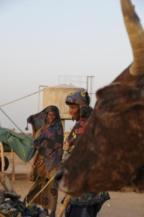 niger juli 2009 247